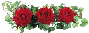 Музей на розата в Казанлък