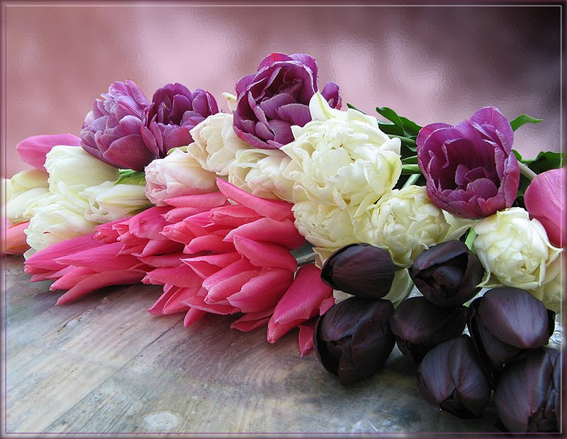 букет цветя лалета