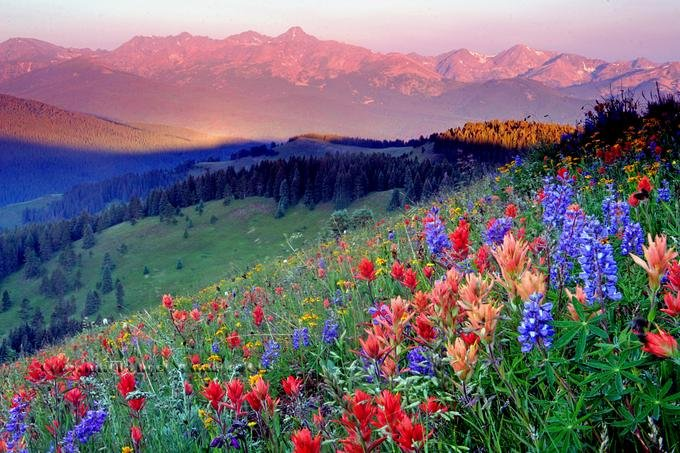 природа планина
