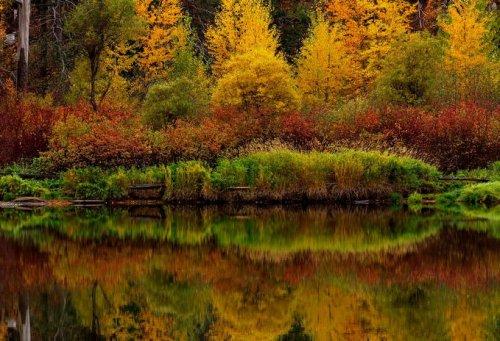 Снимка пейзаж очарованието на есента