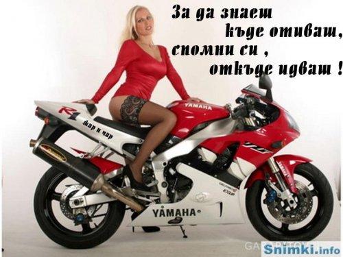 ЖАР И ЧАР #51