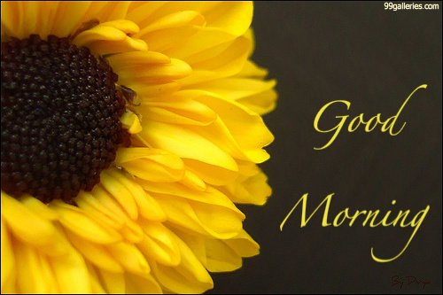 Добро утро мила