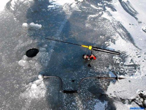 На леда