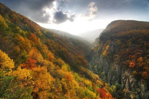 Снимка есенни пейзажи