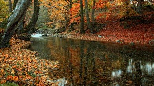 Снимка бяла река калофер