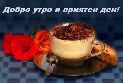 Картинки за добро утро, слънчев ден и приятна вечер - Page 2 Img_264431_1824095_r