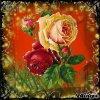 рози с блясък #3
