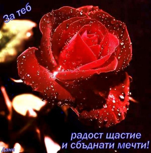 Приятна вечер #245